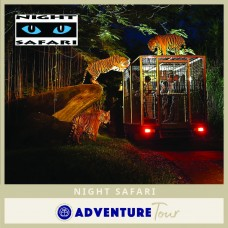 Night Safari Singapore (With Tram Ride)